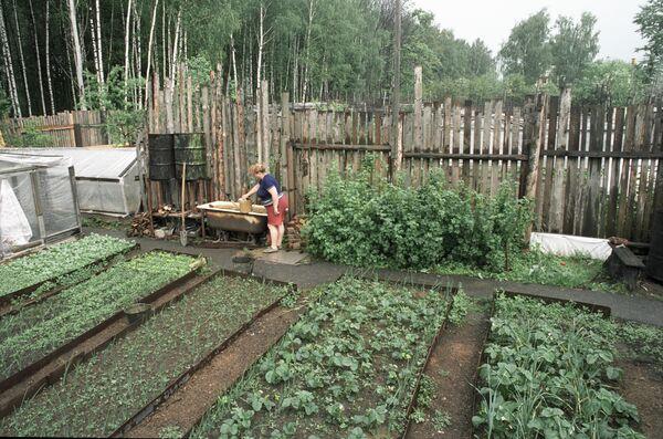 Огородный участок