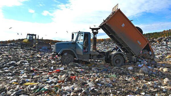 Сортировка и утилизация бытовых отходов