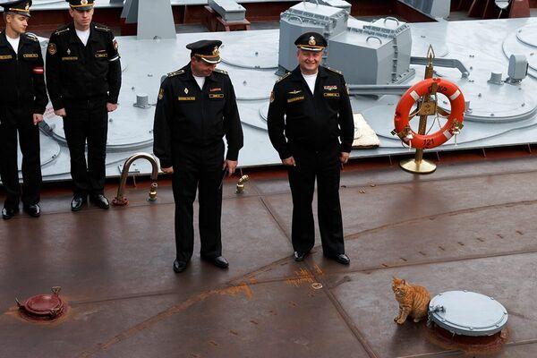 Кот Сергей Иванович на борту гвардейского ракетного крейсера Москва
