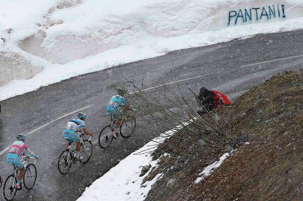 Велогонщики на маршруте этапа Джиро д'Италия