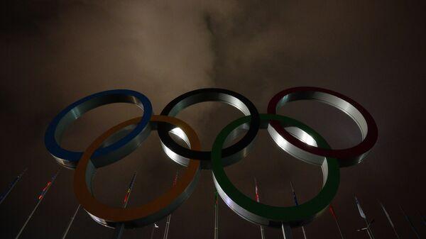 Олимпийские кольца в Олимпийском парке в Сочи.