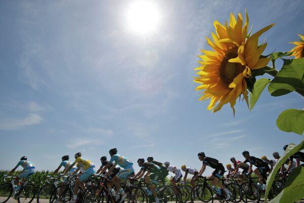 Велогонщики на участке тринадцатого этапа Тур де Франс между городами Сент-Этьен и Шанрус