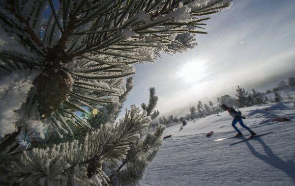 Лыжник на тренировке перед индивидуальной гонкой в соревнованиях по лыжным гонкам