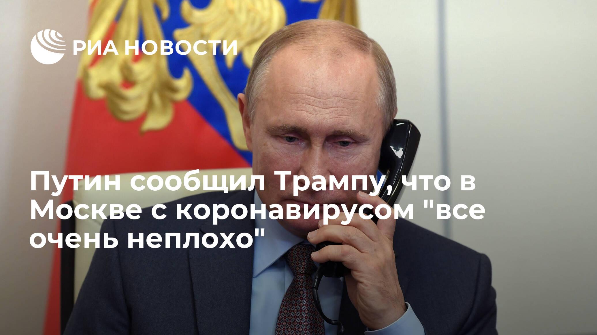 Путин сообщил Трампу, что в Москве с коронавирусом «все очень неплохо»