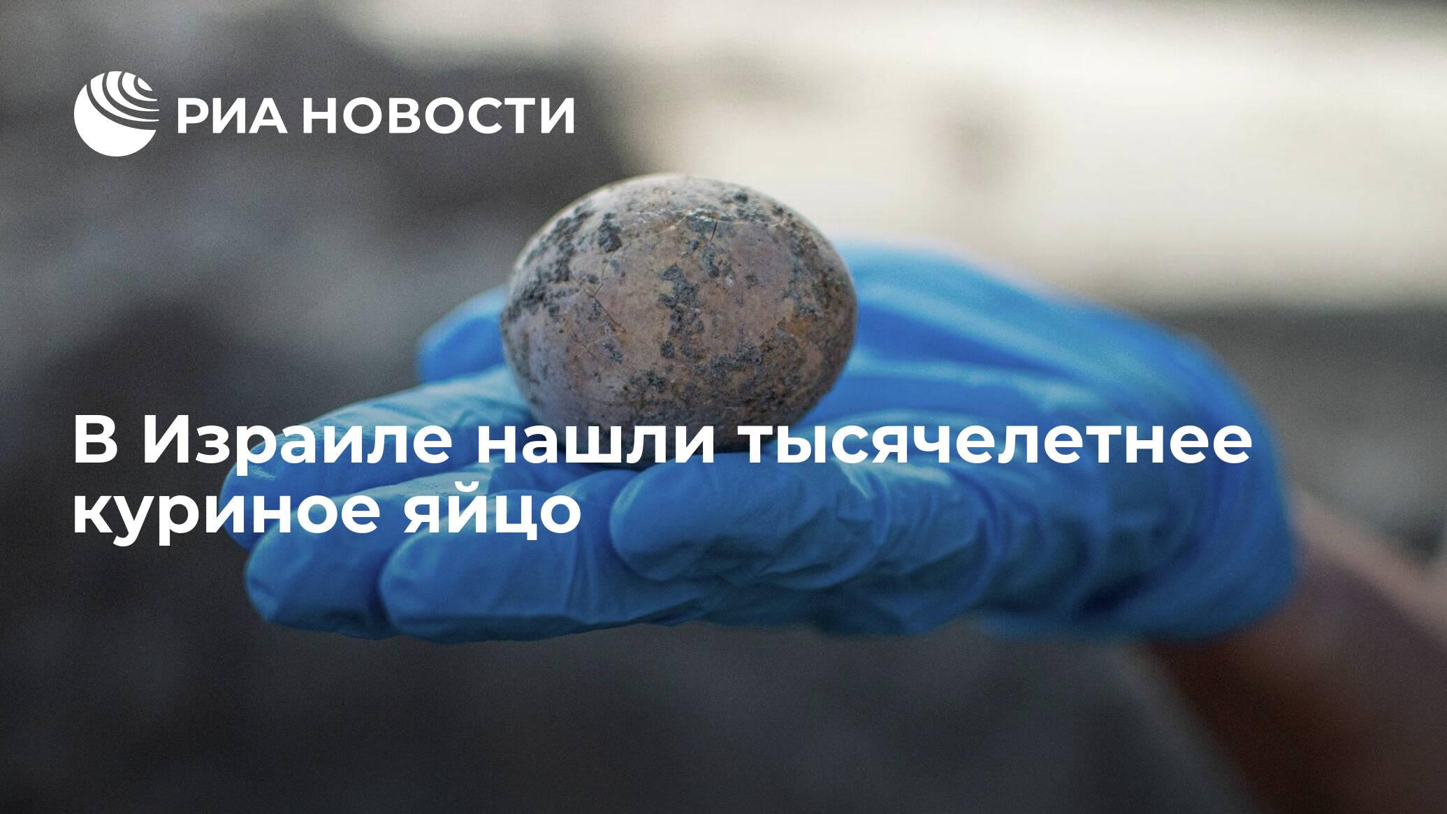 В Израиле нашли тысячелетнее куриное яйцо